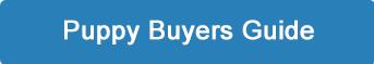 puppy-buyers-button